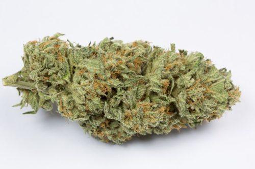 Bubba Kush Strain - Misty Canna Shop - Buy Medical Weed