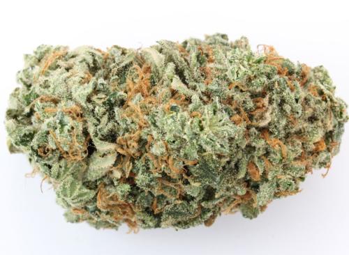 G-13 - Misty Canna Shop - Buy Real Weed Online - Buy marijuana online