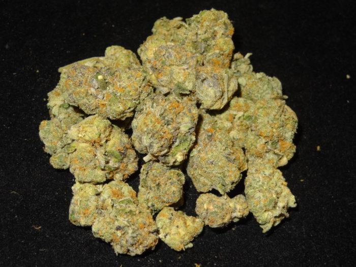 Gelato - Misty Canna Shop - 420 Mail order - Marijuana online