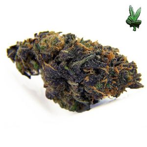 1-ounce-blackberry-kush-(Hybrid)