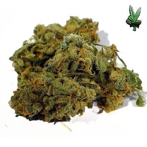 1-ounce-cheese-(Hybrid)