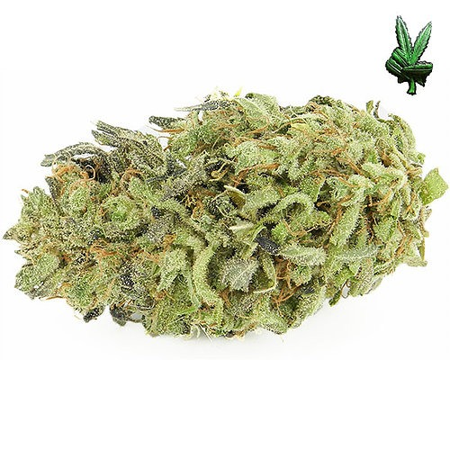 1-ounce-durban-poison-(Sativa)