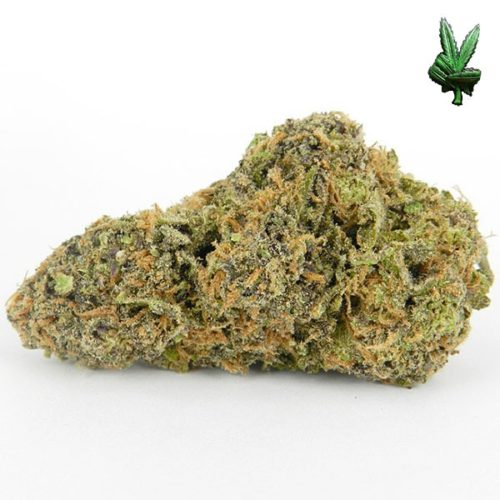 1-ounce-grape-ape-(Hybrid)