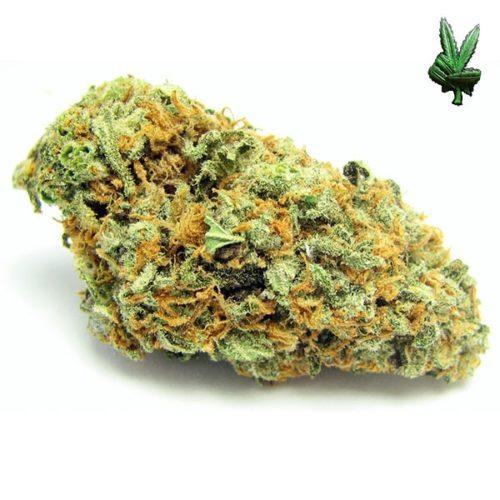 1-ounce-green-crack-(Sativa), Green Crack | Green Crack CBD | Super Green Crack Strain