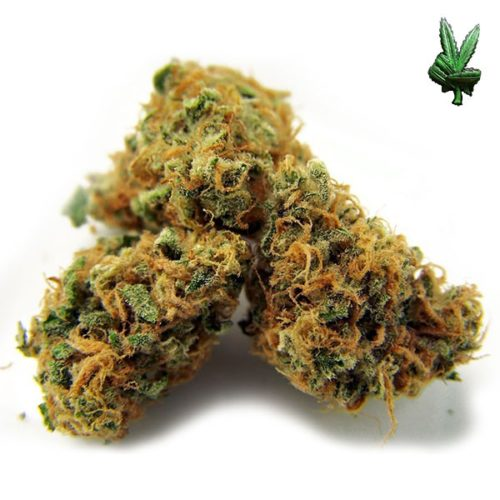 1-ounce-pineapple-express-(Hybrid)