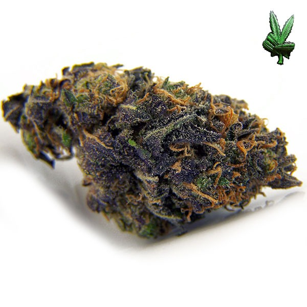 1-ounce-purple-kush-(Indica)