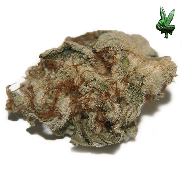 1-ounce-white-widow-(Hybrid)