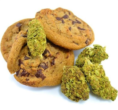 Cannabis Chocolate Chip Cookies - Buy Online Cannabis Chocolate Chip