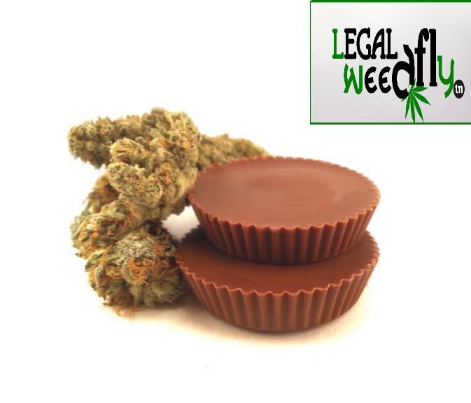 Cannabis Peanut Butter Cups - Peanut Butter Cannacups - Misty Canna
